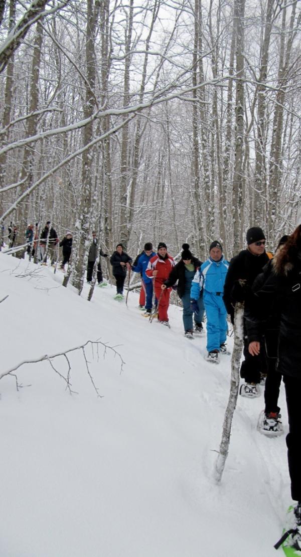 Escursioni sulla neve con le racchette