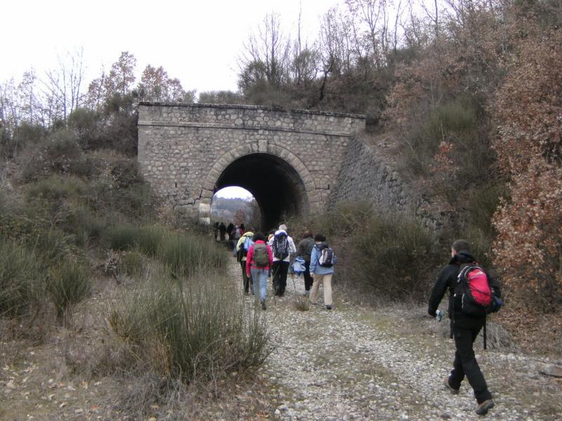 Ferrovie dimenticate (foto di Donato Casamassima)