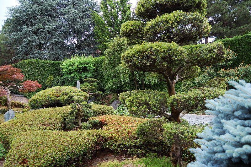 I meravigliosi giardini giapponesi , bellezza, zen e armonia