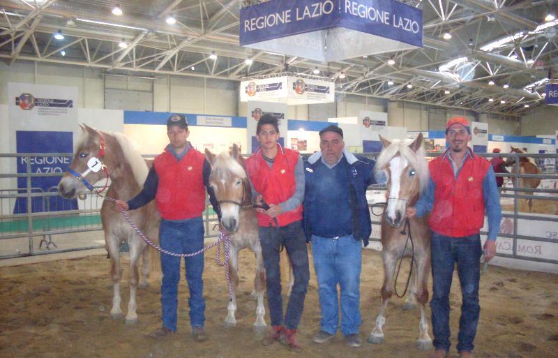 Premiazione Puledre Roma Cavalli 2012
