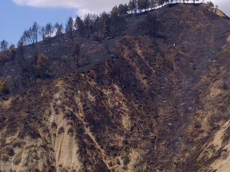 Territorio di Pisticci devastato da incendio - 28 agosto 2012 (foto http://radiolasertv.blogspot.it/)