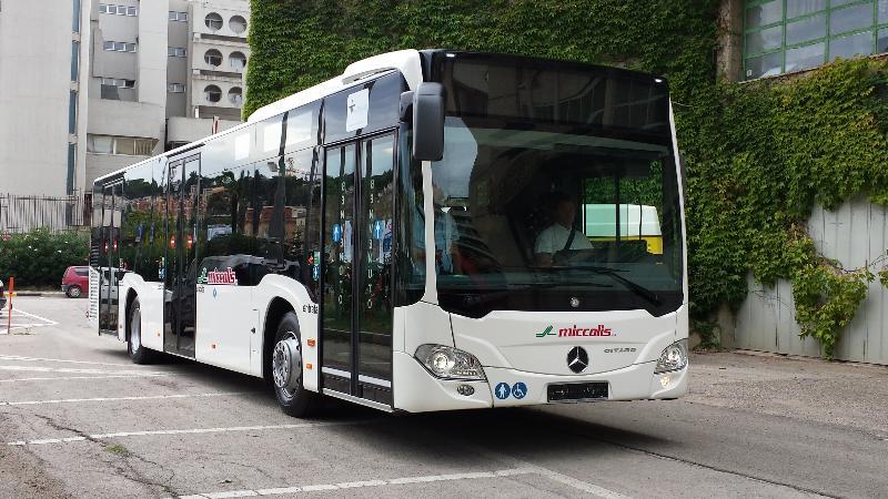 Autobus per il trasporto urbano Miccolis (foto Francesco Calia)