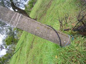 Allacciamento abusivo alla linea elettrica - Montescaglioso
