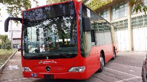 Autobus Miccolis - Matera