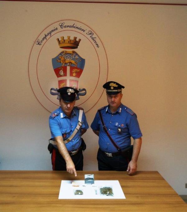 Marijuana rinvenuta dai Carabinieri - 2 ottobre 2014