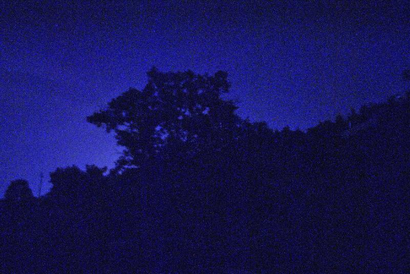 Timmari di notte