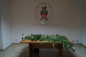 Piante di Cannabis sequestrate a Tursi dai Carabinieri - Matera