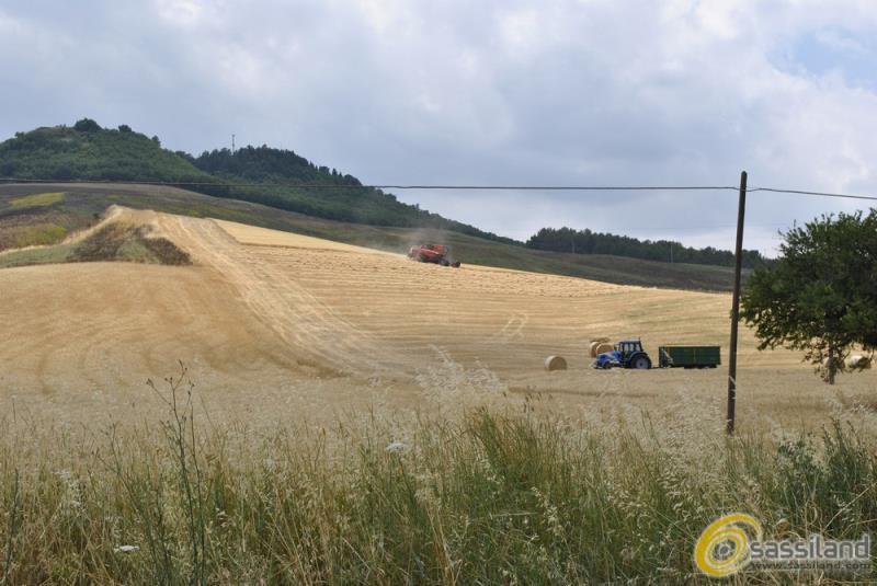 Agricoltura, terreni