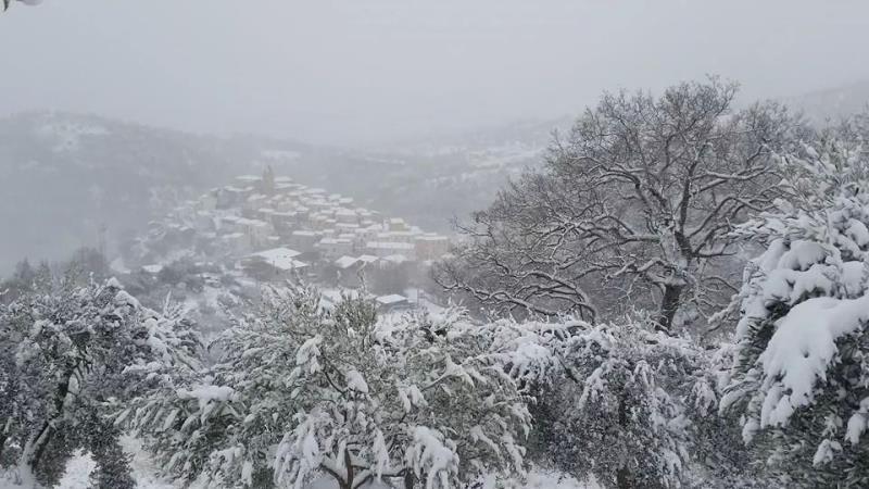 Oliveto Lucano sotto la neve - 9 febbraio 2015 (foto Isabella Rago)