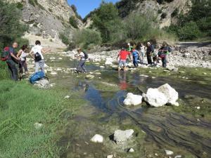 A Garaguso trekking naturalistico e letterario con Falco naumanni - Matera