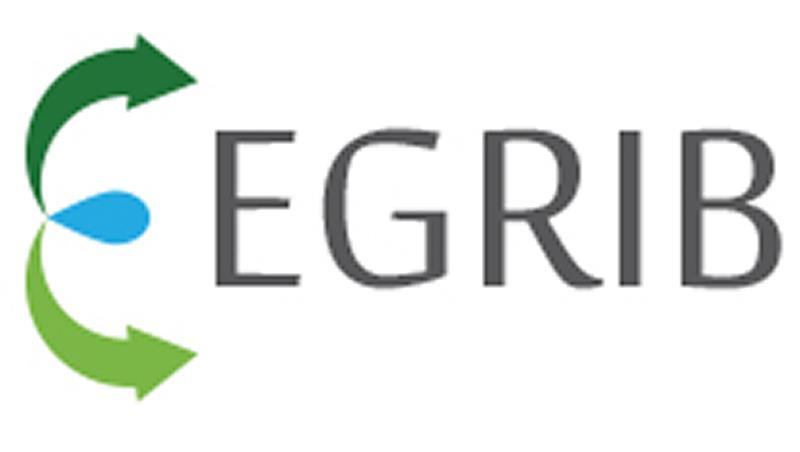 Egrib