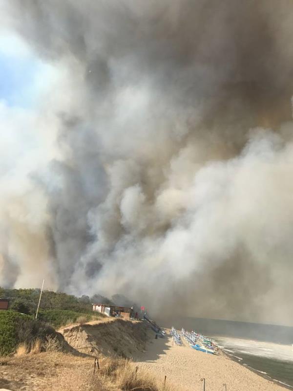 Incendio a Metaponto - 13 luglio 2017